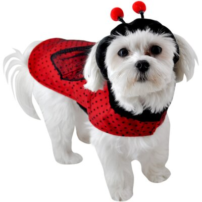 Anit Accessories Ladybug Dog Costume