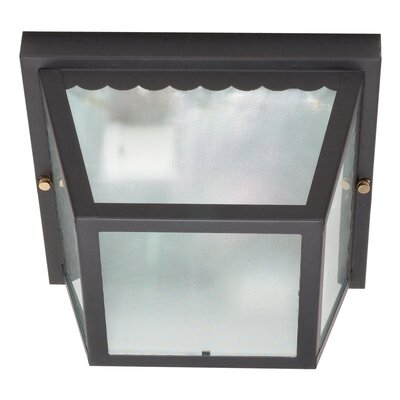Nuvo Lighting Carport 2 Light Flush Mount