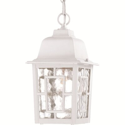 <strong>Nuvo Lighting</strong> Banyon 1 Light Outdoor Hanging Lantern