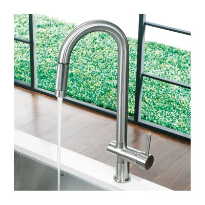 Savona One Handle Single Hole Pull Out Kitchen Faucet