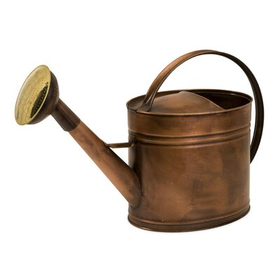 IMAX Tauba Large Oval Watering Can in Copper