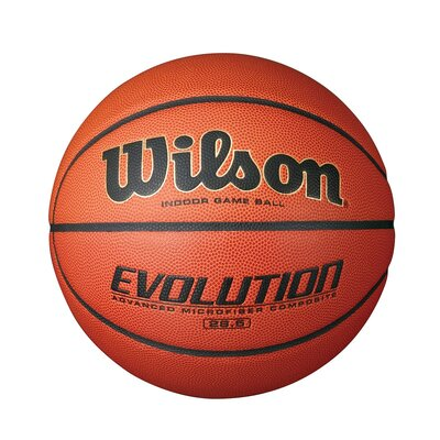 Wilson Evolution Game Ball