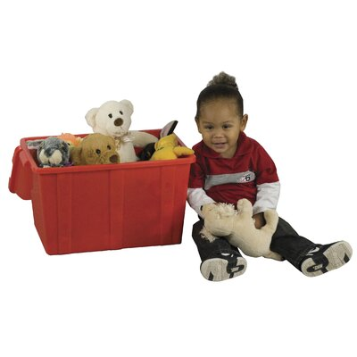 ECR4kids 4 Piece Treasure Chest Storage