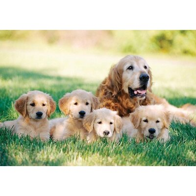Melissa and Doug Golden Retriever with Puppies Cardboard Jigsaw Puzzle