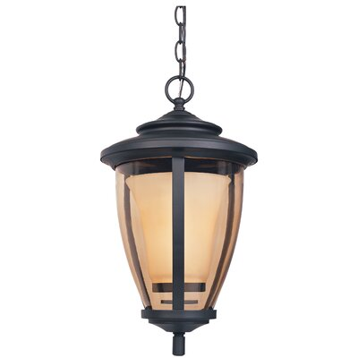 Designers Fountain Stockholm 1 Light Outdoor Hanging Lantern