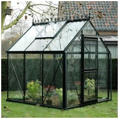 Junior Victorian 8.1' H x 8.0' W x 12.0' D Glass Greenhouse