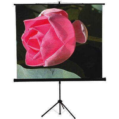 "Mustang 60"" x 60"" Tripod Screen in Matte White"