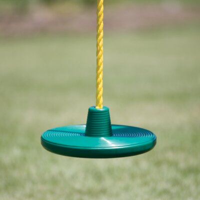 Disc Rope Swing