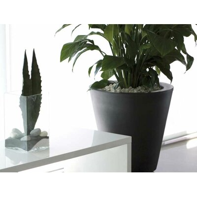 Smart & Green Aigua Cono Round Flower Pot Planter with Self-Watering