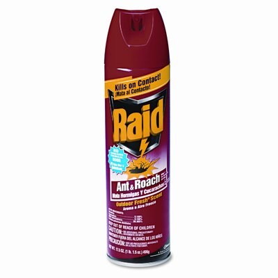 SC Johnson Ant & Roach Killer, 17.5-oz. Aerosol Can