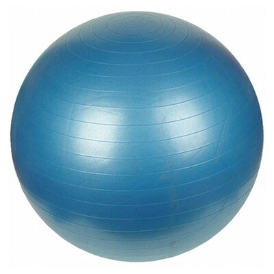 "Sunny Health & Fitness 29.53"" Anti-Burst Gym Ball"