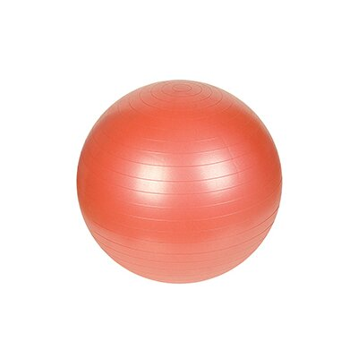 "Sunny Health & Fitness 21.65"" Anti-Burst Gym Ball"