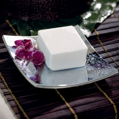 WS Bath Collections Complements Iside Free Standing Soap Dish