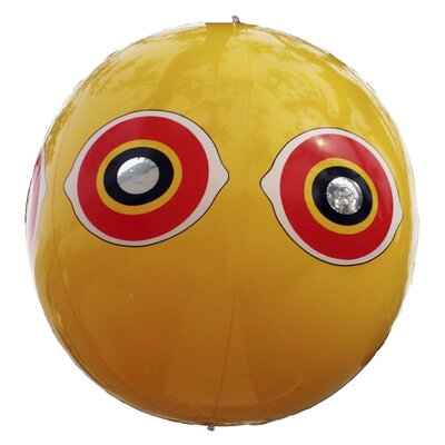 Bird B Gone Eye Balloon