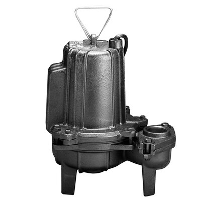 WAYNE 1 HP Manual Operation Cast-Iron Heavy Duty Commercial Sewage Pump
