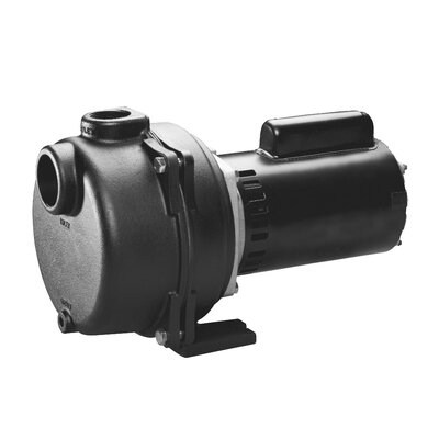 3/4 HP Cast-Iron Lawn Sprinkling Pump