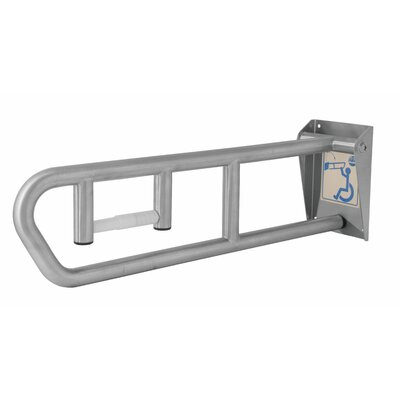 "Bradley Corporation Swing-Up 6"" Grab Bar"