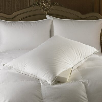Downright Intera Medium Dual Filled Pillow