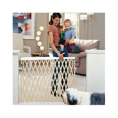 Expandable Swing Gate