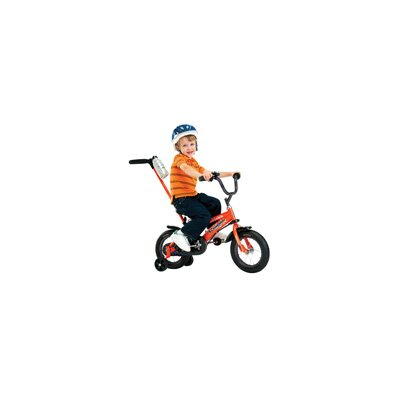 "Schwinn Boys 12"" Juvenile Grit Bike with Training Wheels"