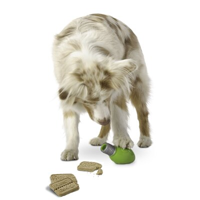 Planet Dog Orbee Tuff Bulb Dog Toy with Treat Spot in Green