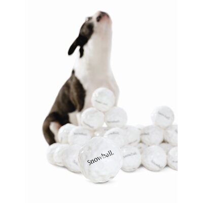 Planet Dog Orbee Tuff Snowball Dog Toy