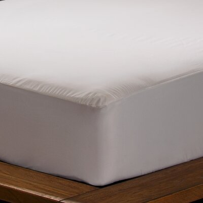 Sealy Stain Protection Mattress Encasement