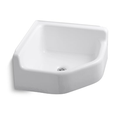 Service Sink : Whitby Service Sink Wayfair