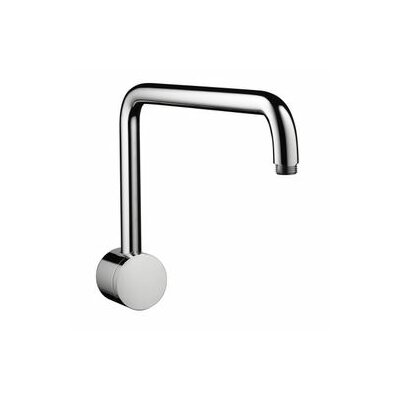 Hansgrohe Raindance Shower Arm