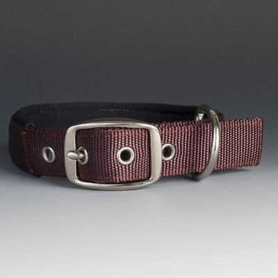 The Swagger Dog Collar in Brown