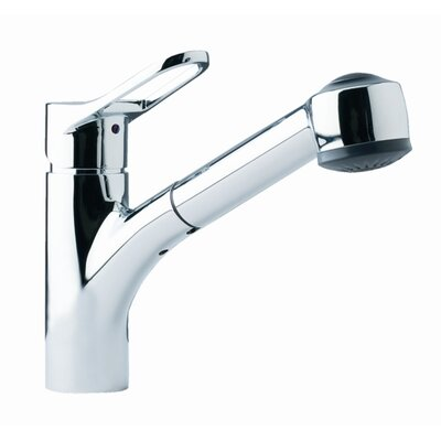 Single Handle Single Hole Kitchen Faucet with Pull Out Spray