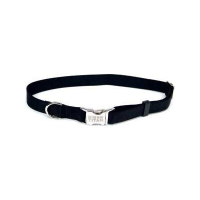 Adjustable Nylon Dog Collar with Metal Buckle