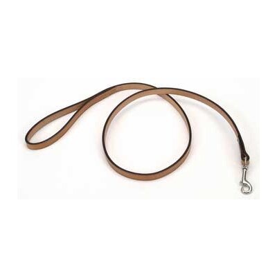 Coastal Pet Products Pet Oak Tanned Leather Leash