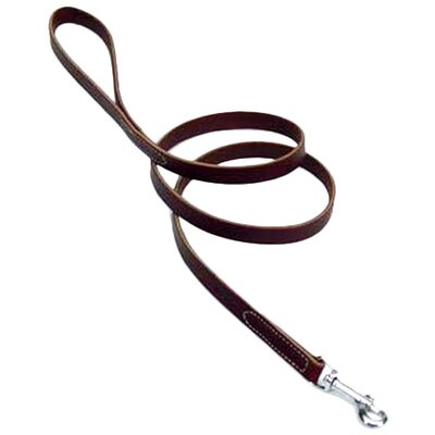 Coastal Pet Products Latigo Leather Dog Leash