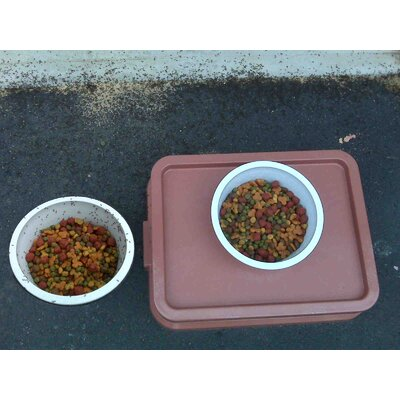 Ant Proof Pet Food Tray