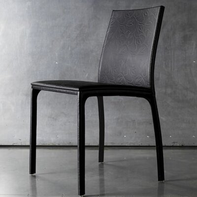 Luxo by Modloft Vigo Side Chair