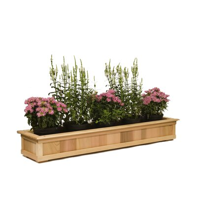 Top Rail Cedar Planter
