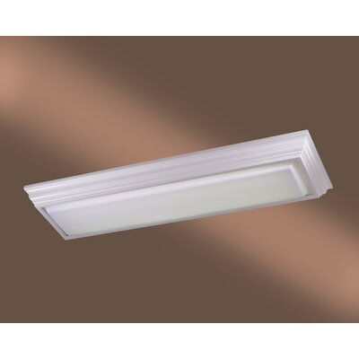 2 Light Kitchen Strip Light