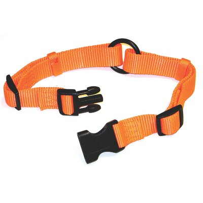 Hamilton Pet Products Adjustable Saferite Dog Collar in Orange