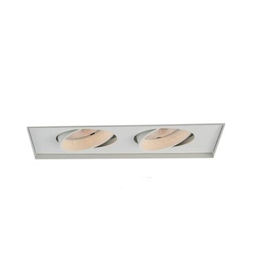 Two Light Recessed Trimless Multi Spot for MT-238 in White