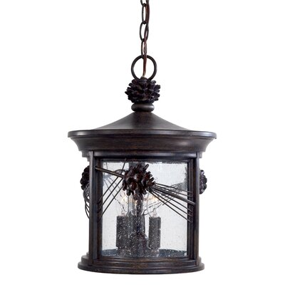 Great Outdoors by Minka Abbey Lane 3 Light Chain Hung