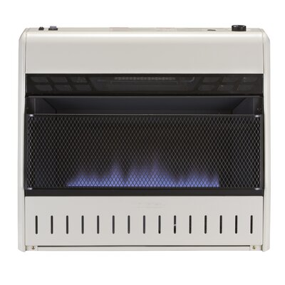 World Marketing 25,000 BTU Propane Wall Space Heater