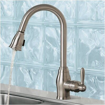 Pegasus Newbury One Handle Single Hole Pull Out Spray Kitchen Faucet