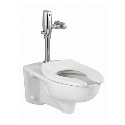 Commercial Wall Mounted Toilet Wayfair