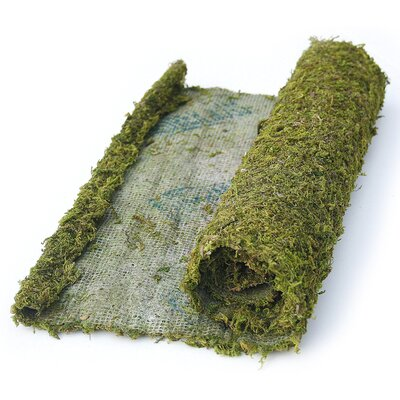 SuperMoss™ Instant Green All Purpose Moss/Mat Runner