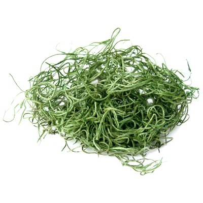SuperMoss™ Spanish Moss Preserved