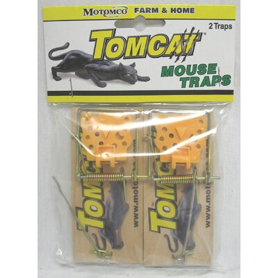 Wooden Mouse Trap (Set of 2)