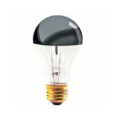 Bulbrite Industries 100W 120-Volt Light Bulb