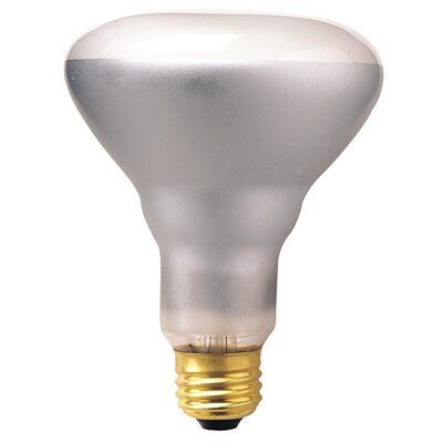 Bulbrite Industries 65W 130-Volt (2700K) Incandescent Light Bulb
