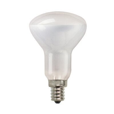 Bulbrite Industries 50W 130-Volt (2700K) Incandescent Light Bulb